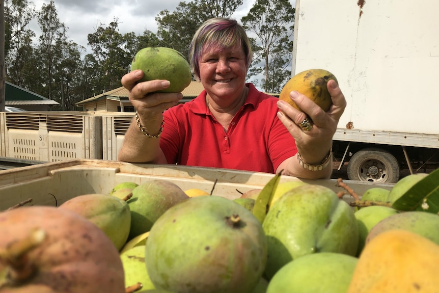 Marlene Owen stands in front of a tub of mangoes, holding two mangoes.