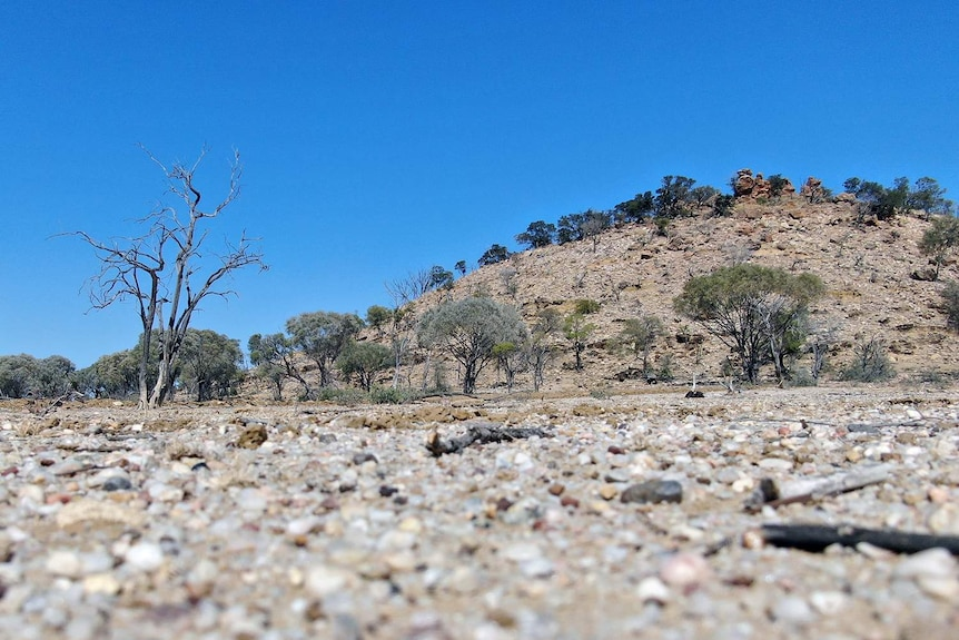 Starlights Lookout outside Longreach in western Queensland was part of Harry Readford's epic cattle heist