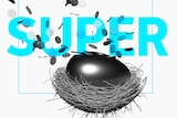 Egg in Nest with coins and the word super
