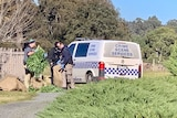 Police place cannabis plants into hessian bags