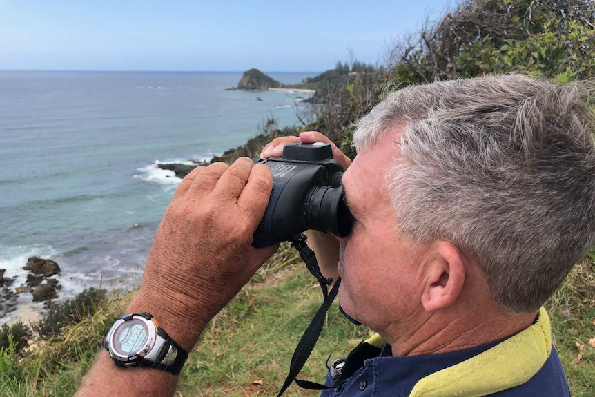 Whale spotter looking through binoculars for humpbacks off the coast of Port Macquarie.