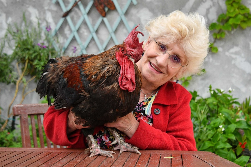 Corinne Fesseau poses with her rooster Maurice in her garden.