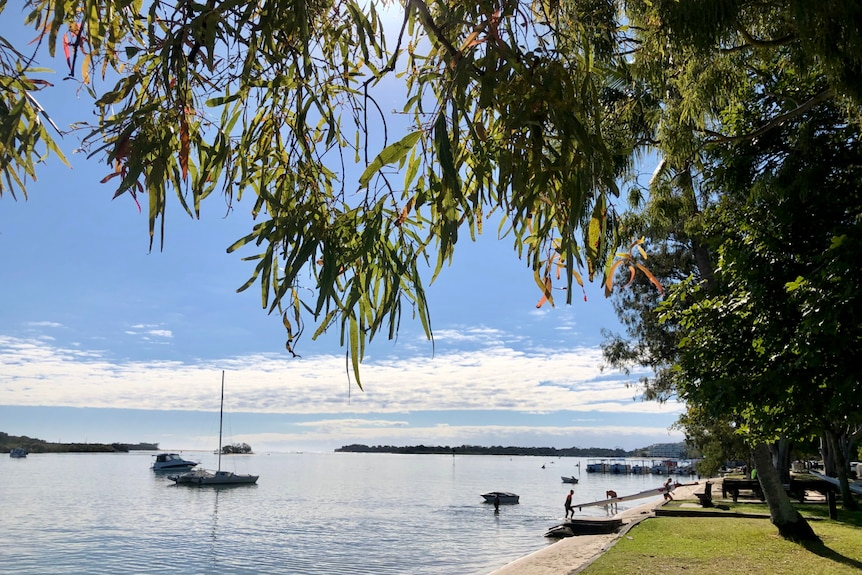 Looking under the leaves of trees to boats in the beautiful Noosa river.