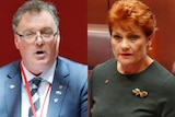 A composite image showing Pauline Hanson and Rod Culleton.
