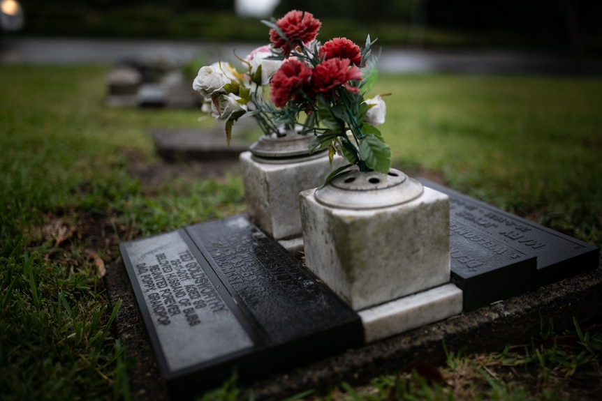 Red and white flowers sit in a small pot with holes next to a black plaque at a grave at Rookwood Cemetery.