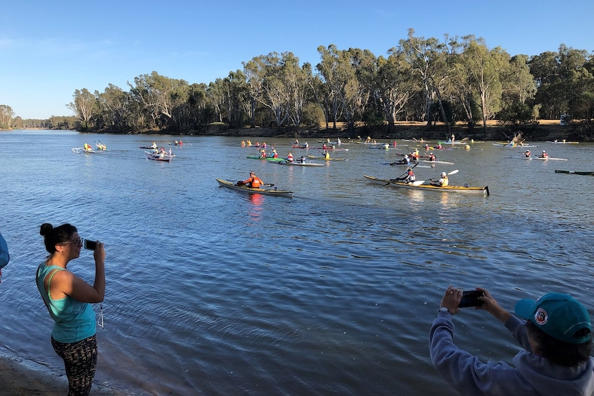 Paddlers in kayaks on the Murray River