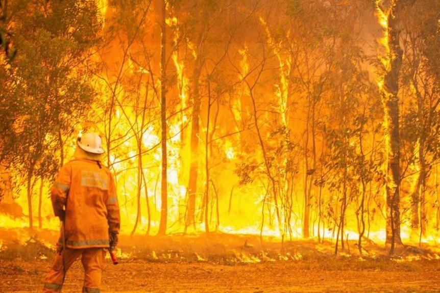 QFES footage of fire crews battling the Tinnanbar and Deepwater bushfires.