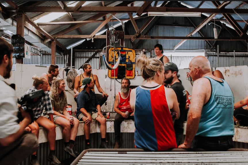 A group of people stand inside a shearing shed.