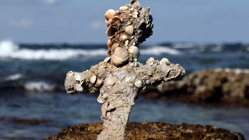 The hilt of a barnacle-encrusted sword.