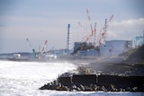 A nuclear power plant on a rocky shore