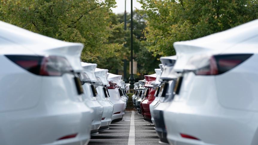 A car park full of Tesla electric cars.