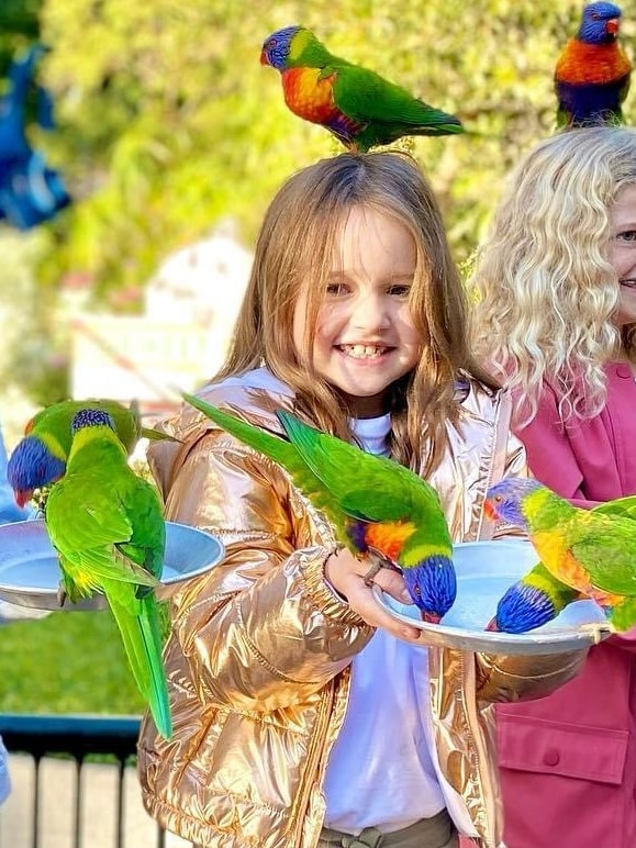A young girl with parrots in her arms and on her head.