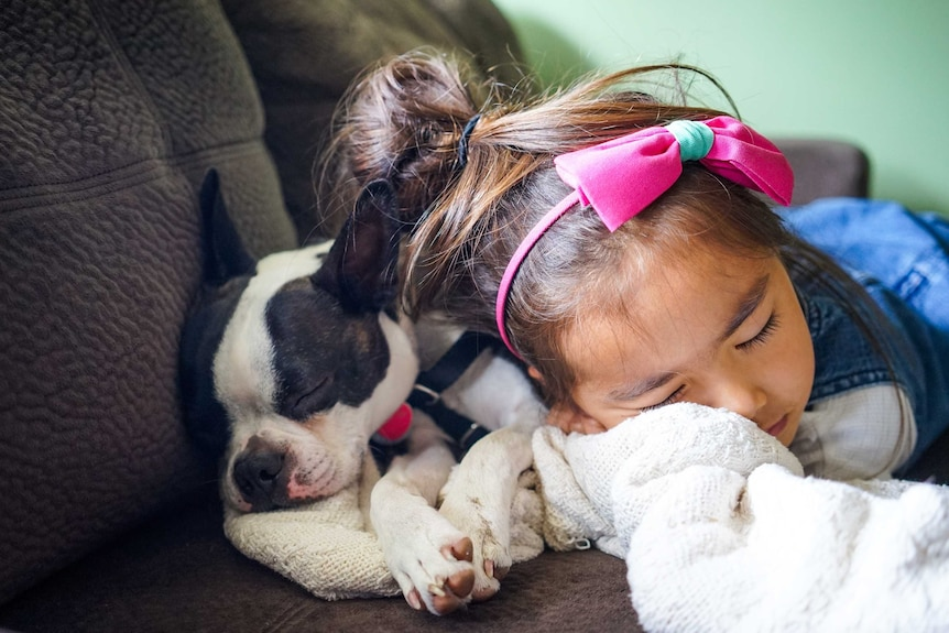 Little girl and puppy asleep on sofa together