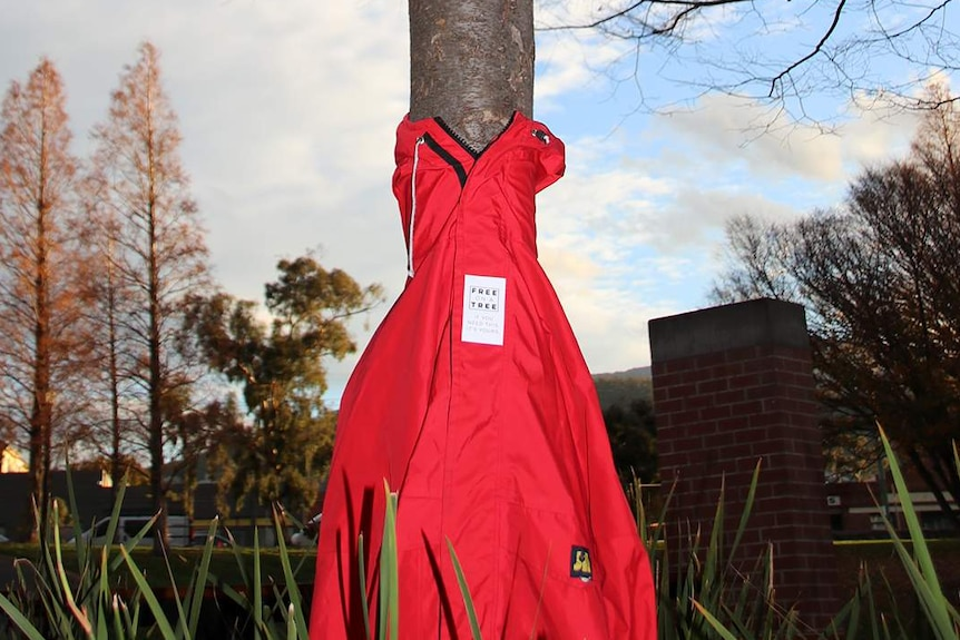 Red coat on a tree for Free On A Tree project in Hobart.