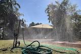 Sprinkler in Katherine