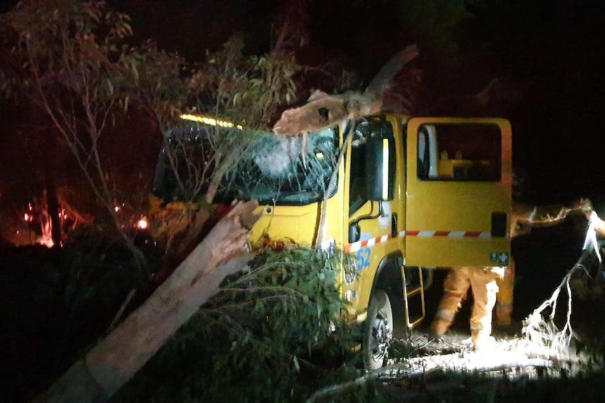 A badly damaged fire truck with a tree over the cab and a shattered windscreen.