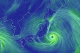 wind map shows strong winds off Japan coast near Tokyo.