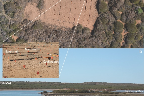 An aerial photo showing different parts of an archaeological dig at Bandicoot Bay.
