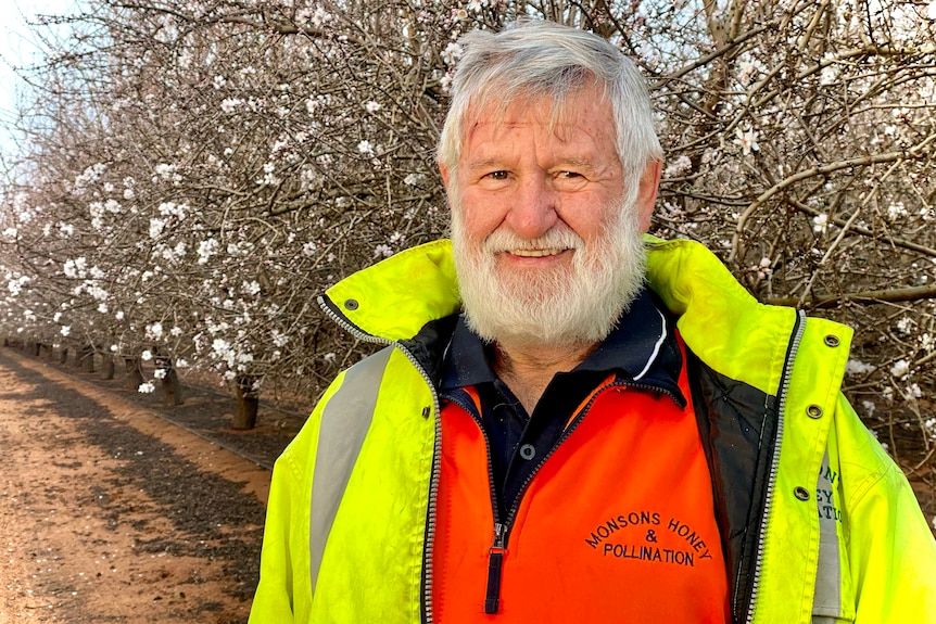 A man wearing a hi vis shirt and jacket stands in an almond orchard which is in blossom