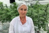 Emily Rigby wears a white coat and hair net in a greenhouse with cannabis plants in the background.