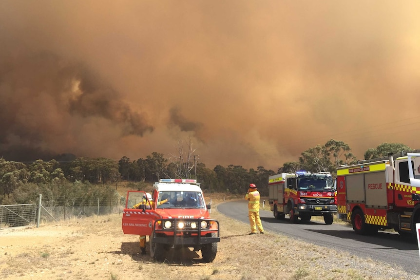 NSW RFS watching bushland on fire with plumes of smoke