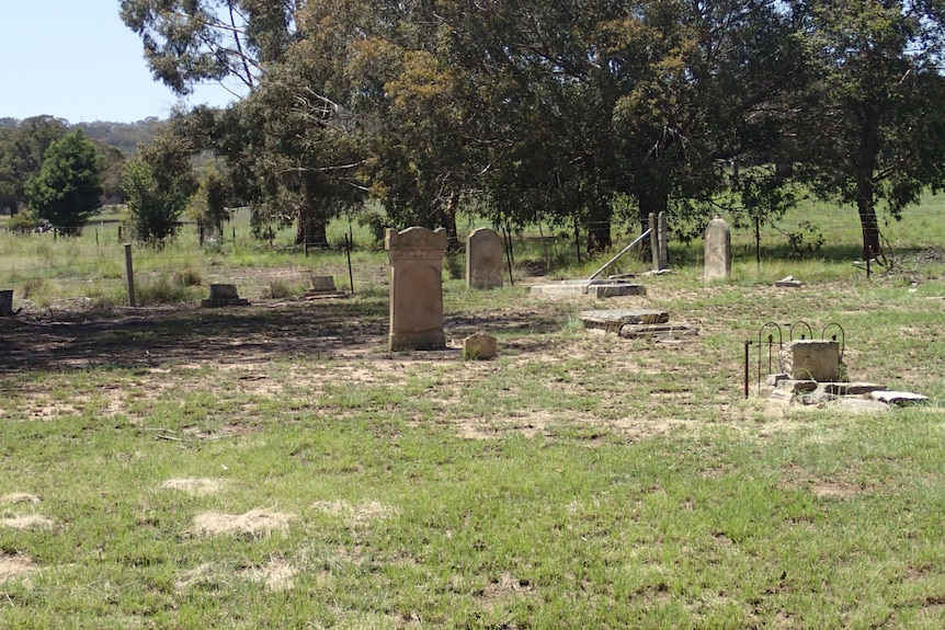 Headstone stand in a small green plot of land with trees. Some headstones are broken.