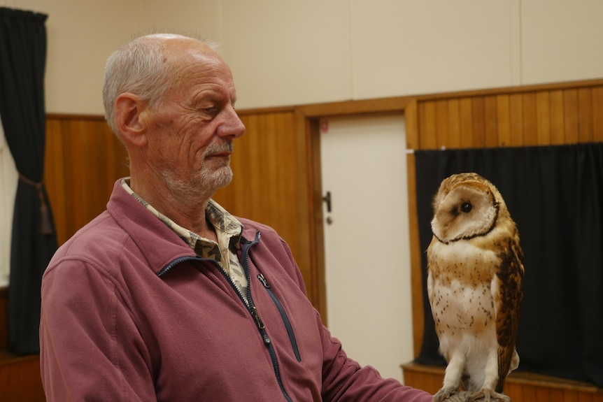 A slender, older man with a neat grey beard inspects a taxidermied masked owl.