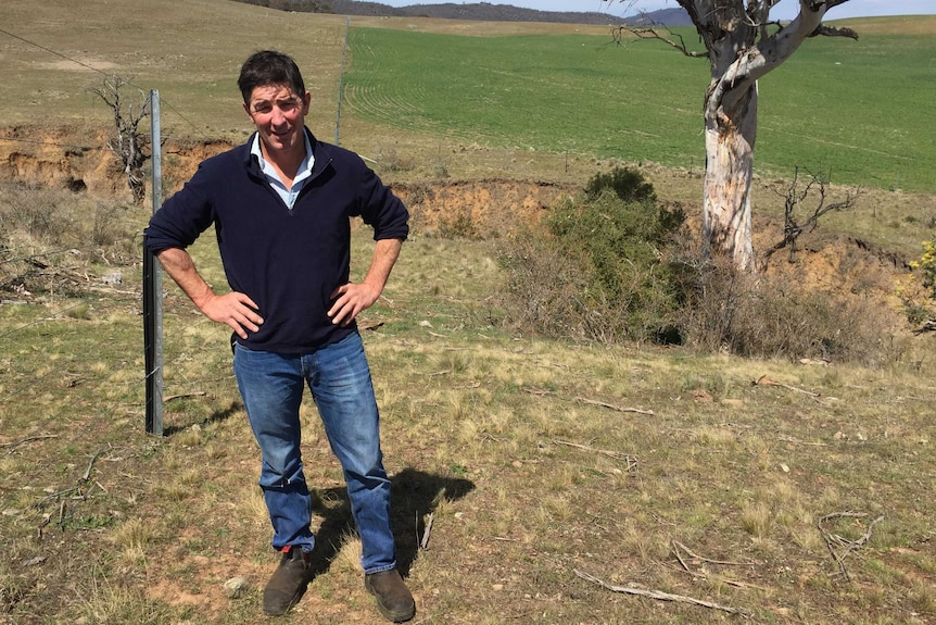 A man with dark hair, wearing jeans and a navy jumping, stands in front of a paddock with his hands on his hips.