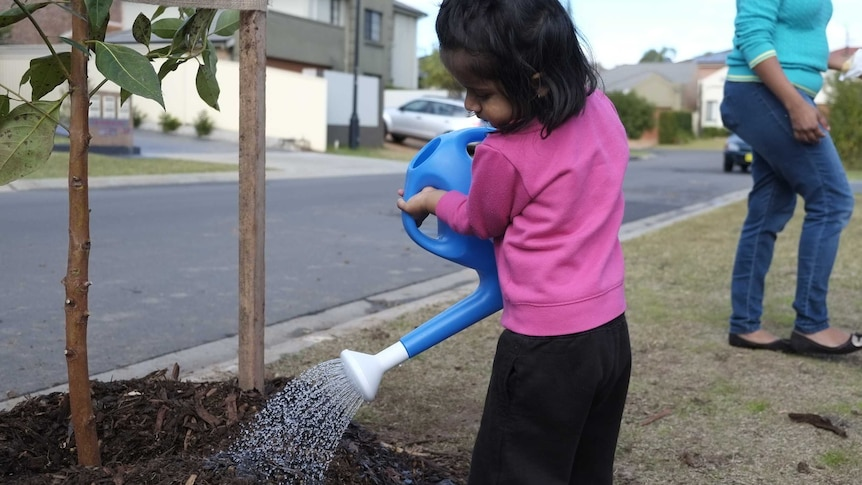 Girl waters a plant