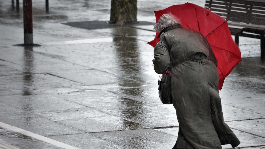 Old woman walking in the rain along city street with red umbrella.