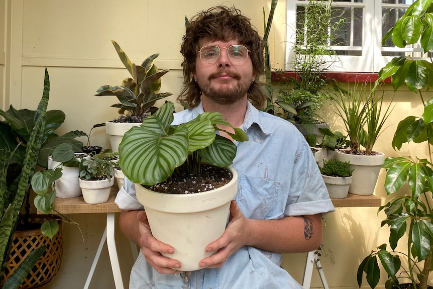 James holds a calathea in white pot. He wears love heart glasses and a blue shirt.