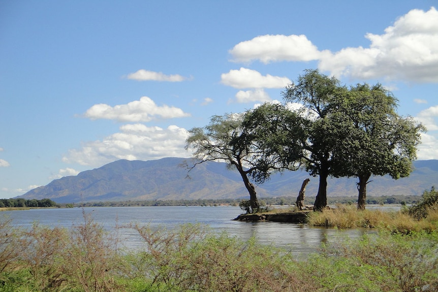 A sweeping landscape photo shows a blue river leading the eye out to mountains on the horizon with three trees in the foreground