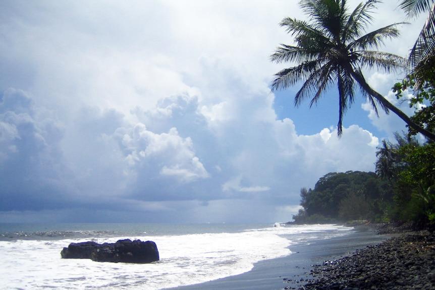 Beach and palm trees in Tahiti