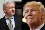 A composite image shows Julian Assange and Donald Trump.