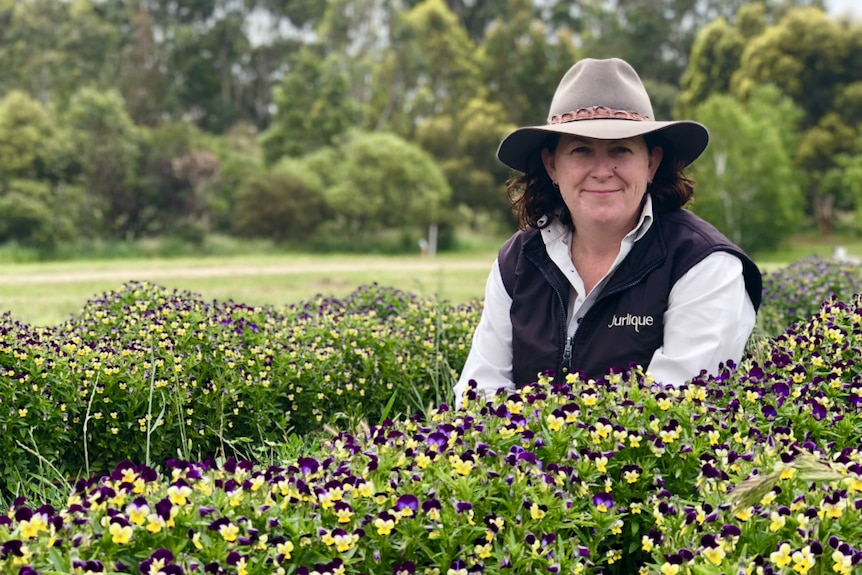 Cherie Hutchinson is the farm production manager at the Jurlique farm in the Adelaide Hills.