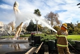 The Bendigo Fire Station crew help hose down Marilyn Monroe as part of the agreement to wash the statue while on loan.