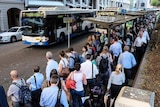 People lining up for buses in the CBD