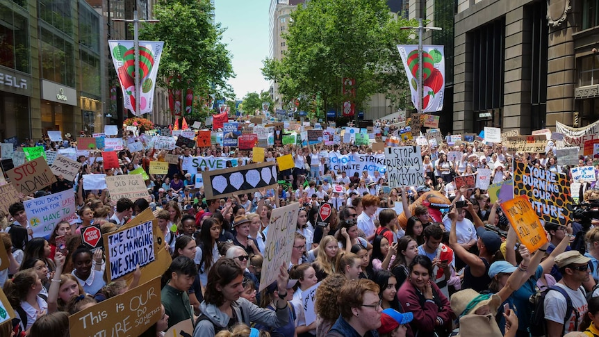 Students walk out of school to rally for action on climate change