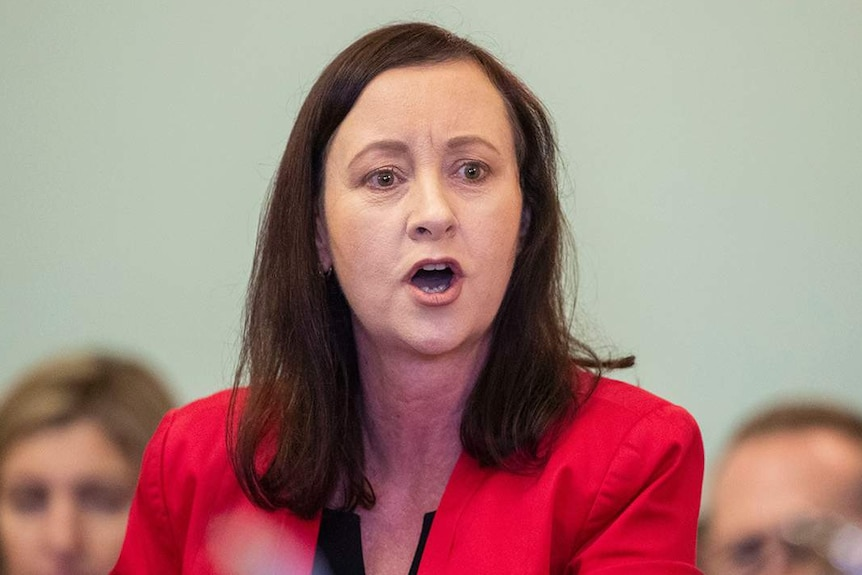 Labor MP Yvette D'Ath speaks during Question Time at Parliament House in Brisbane.