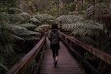 Woman walking in forest.