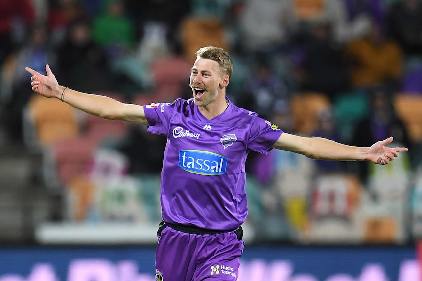 Hobart Hurricanes bowler Riley Meredith runs with arms wide open after taking a wicket against the Sydney Sixers in the BBL.
