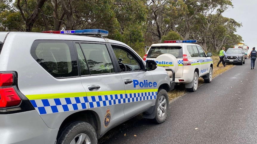 Tasmania Police cars parked along a sealed road with tree in the background