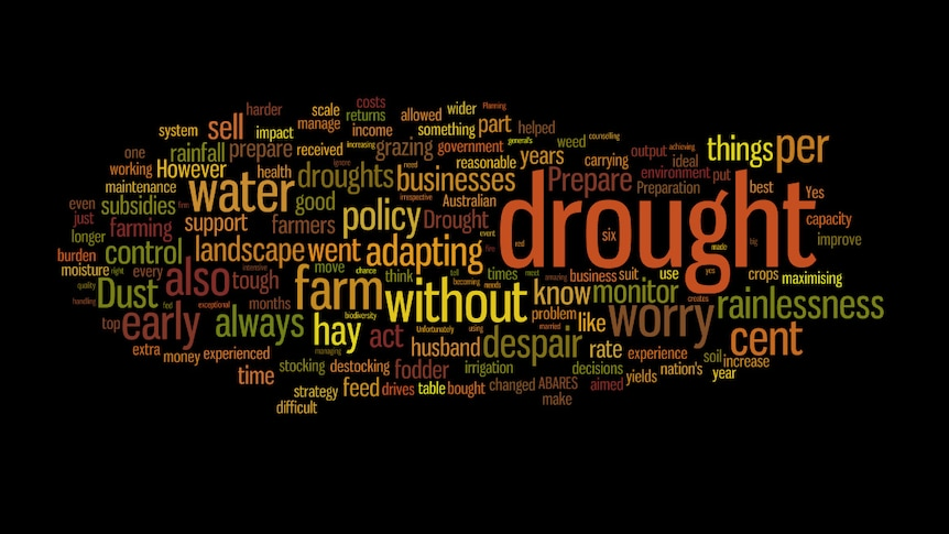 A collage of words used by the farmer forum to describe drought.
