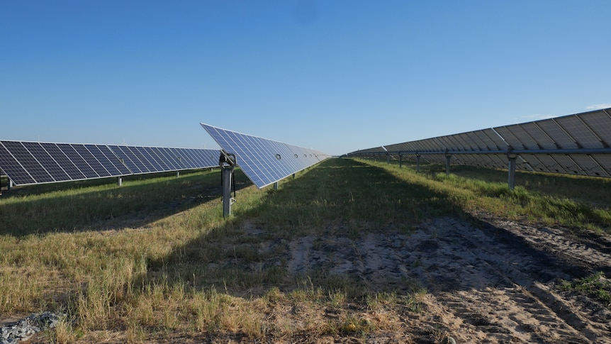 2 rows of solar panels stand in a field with the sun shining