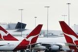 Qantas jets at Sydney Airport