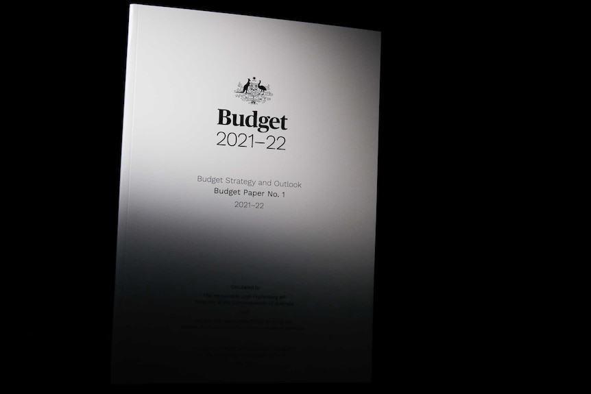 A monotone budget document is visible on a dark background.