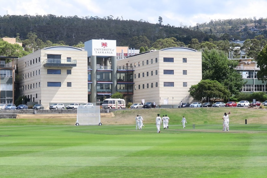 A cricket game in progress at the University of Tasmania