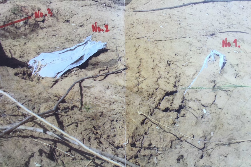 Exposed remains documented in a photograph