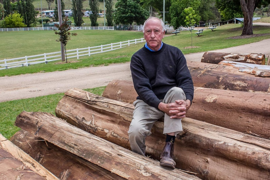 A man sits on top of large eucalyptus logs at a country showground