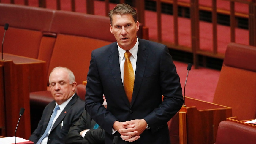 Cory Bernardi stands in the Senate to announce he is resigning from the Liberal Party